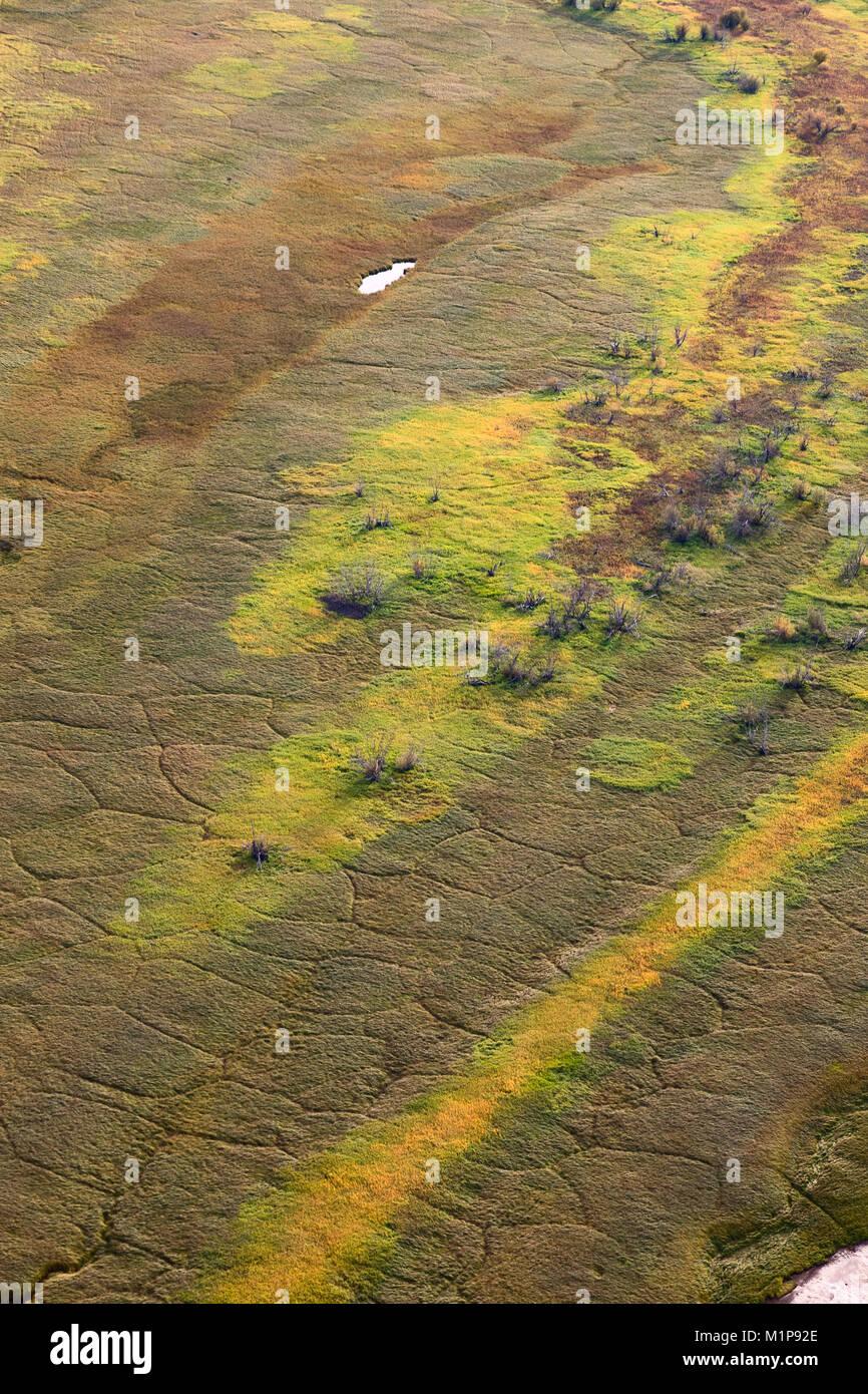 Wetland floodplain in autumn, top view - Stock Image