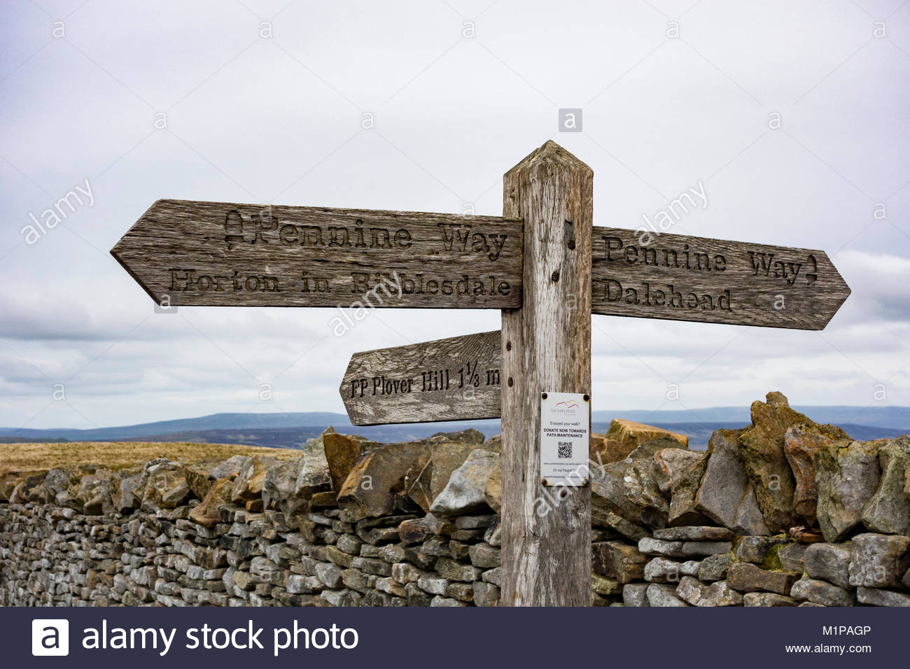Pennine Way wooden signpost at the summit of Pen y Ghent, one of the 3 peaks in Yorkshire - Stock Image