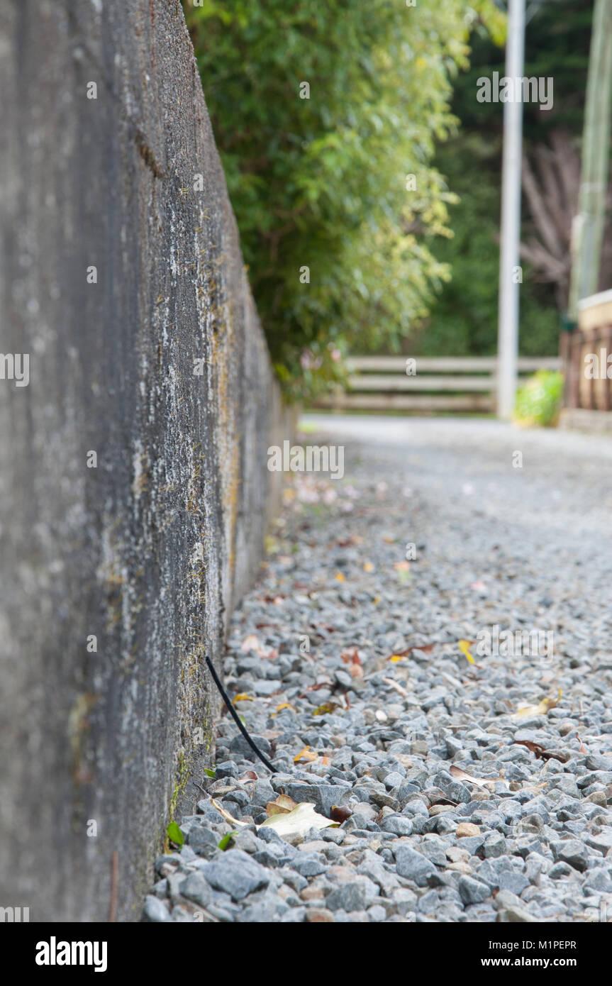 Gravel Driveway   Stock Image