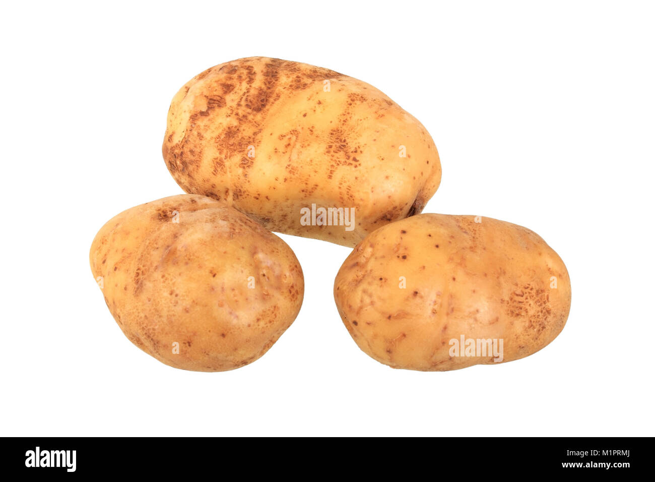Potato industry, free plates, Kartoffelsorte Industrie, Freisteller - Stock Image