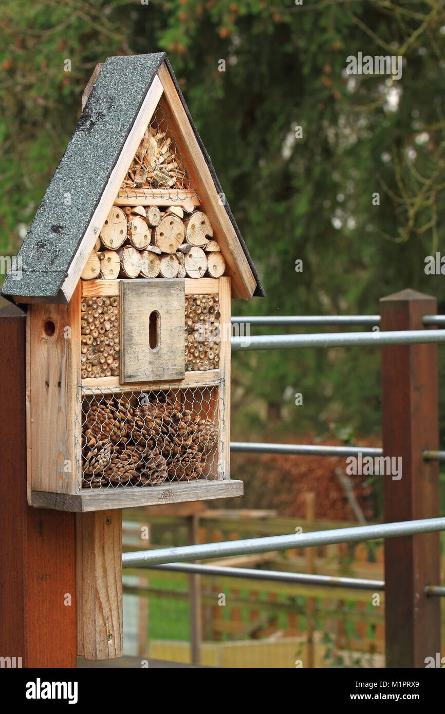 Small insects hotel for solitary bees., Kleines Insektenhotel für solitäre Wildbienen. - Stock Image