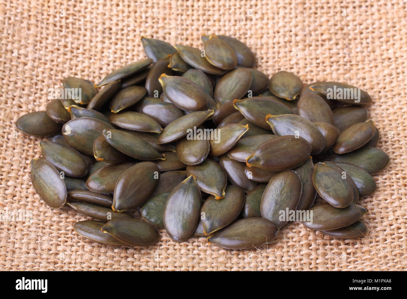 The Styrian oil pumpkin seeds. One of the most valuable edible pumpkins, among other things, to obtain the pumpkin - Stock Image