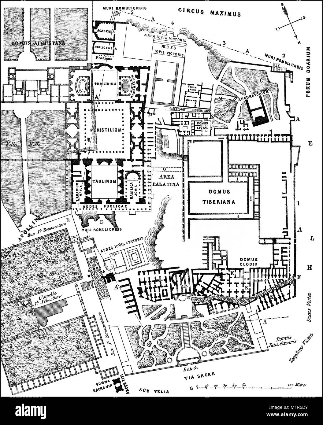 Plan of the excavations at Palatine Hill, Rome, Italy, 19th Century - Stock Image