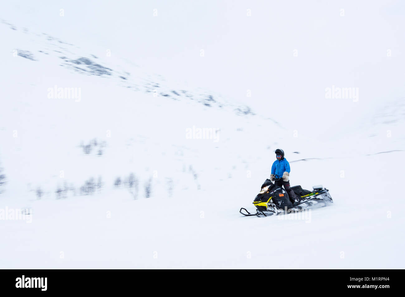 Skibotn, Norway. Guide Thomas driving snowmobile. - Stock Image
