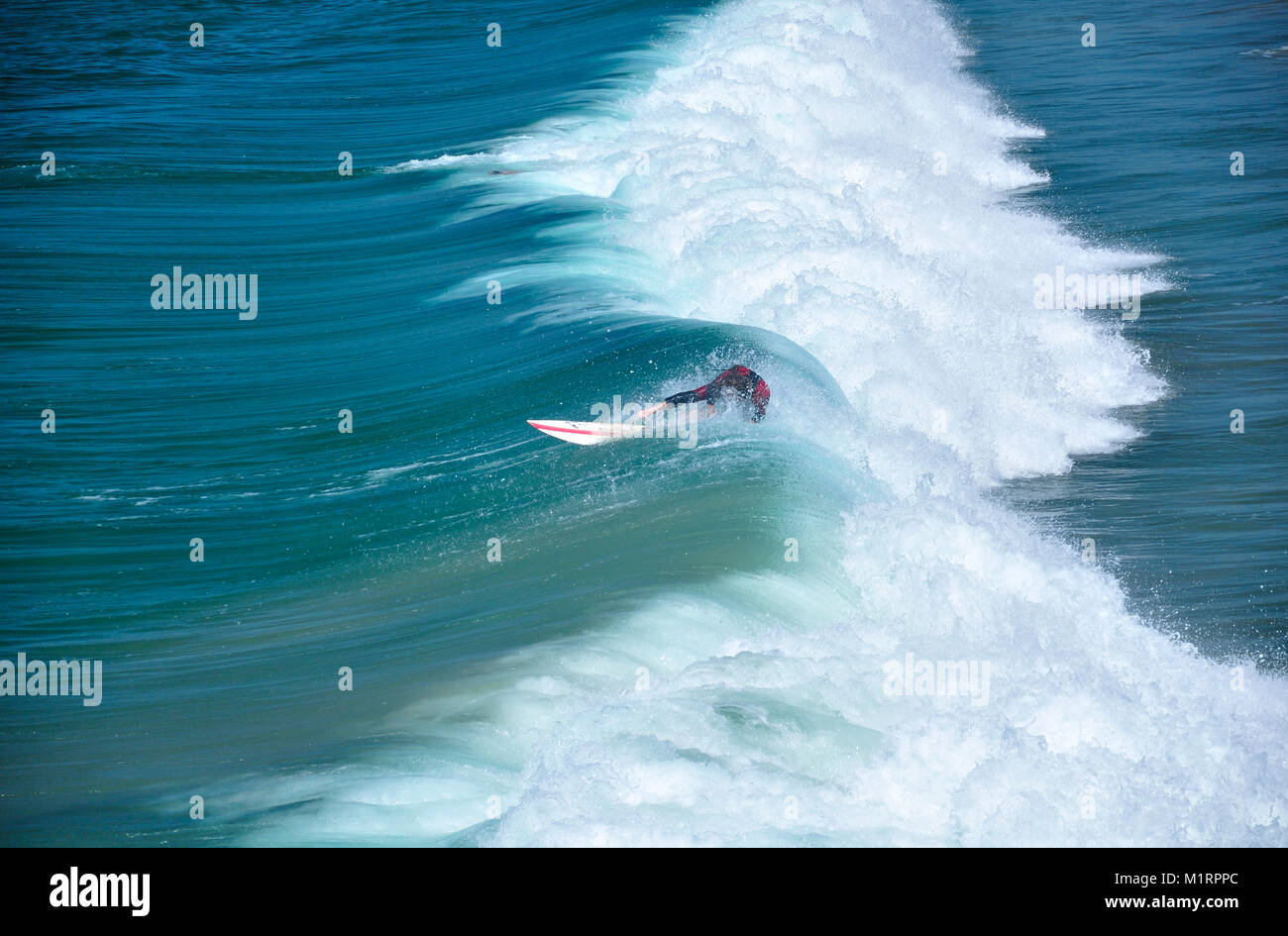A surfer riding the waves and wiping out at Manhattan beach california on a sunny day on the west coast. - Stock Image