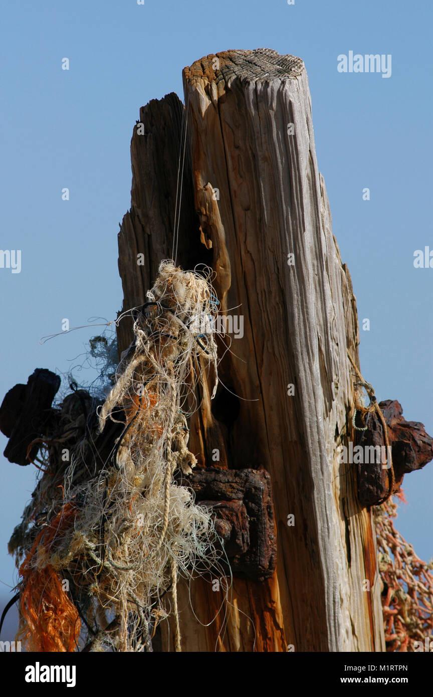 Plastic Waste, Flotsam and Jetsam on and old groyne. - Stock Image