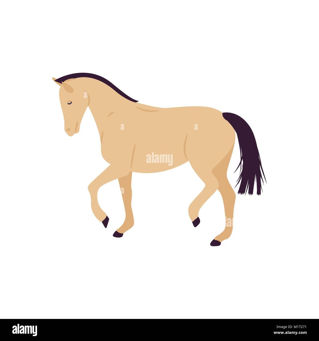 Cartoon horse vector illustration. Flat style pony. - Stock Image