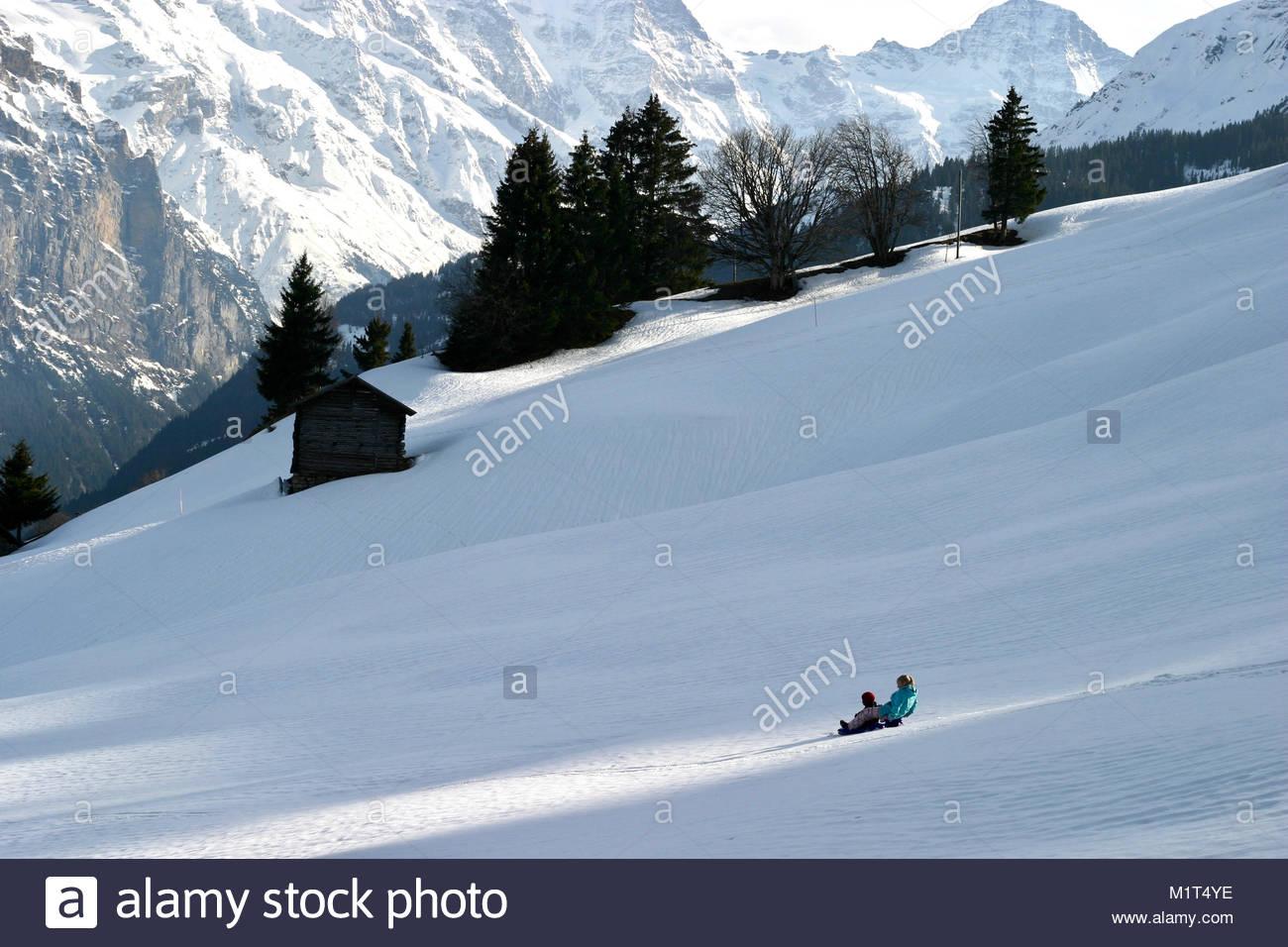 Two children sliding downhill on the  mountains close to Interlaken/Grinelwald, Switzerland - Stock Image