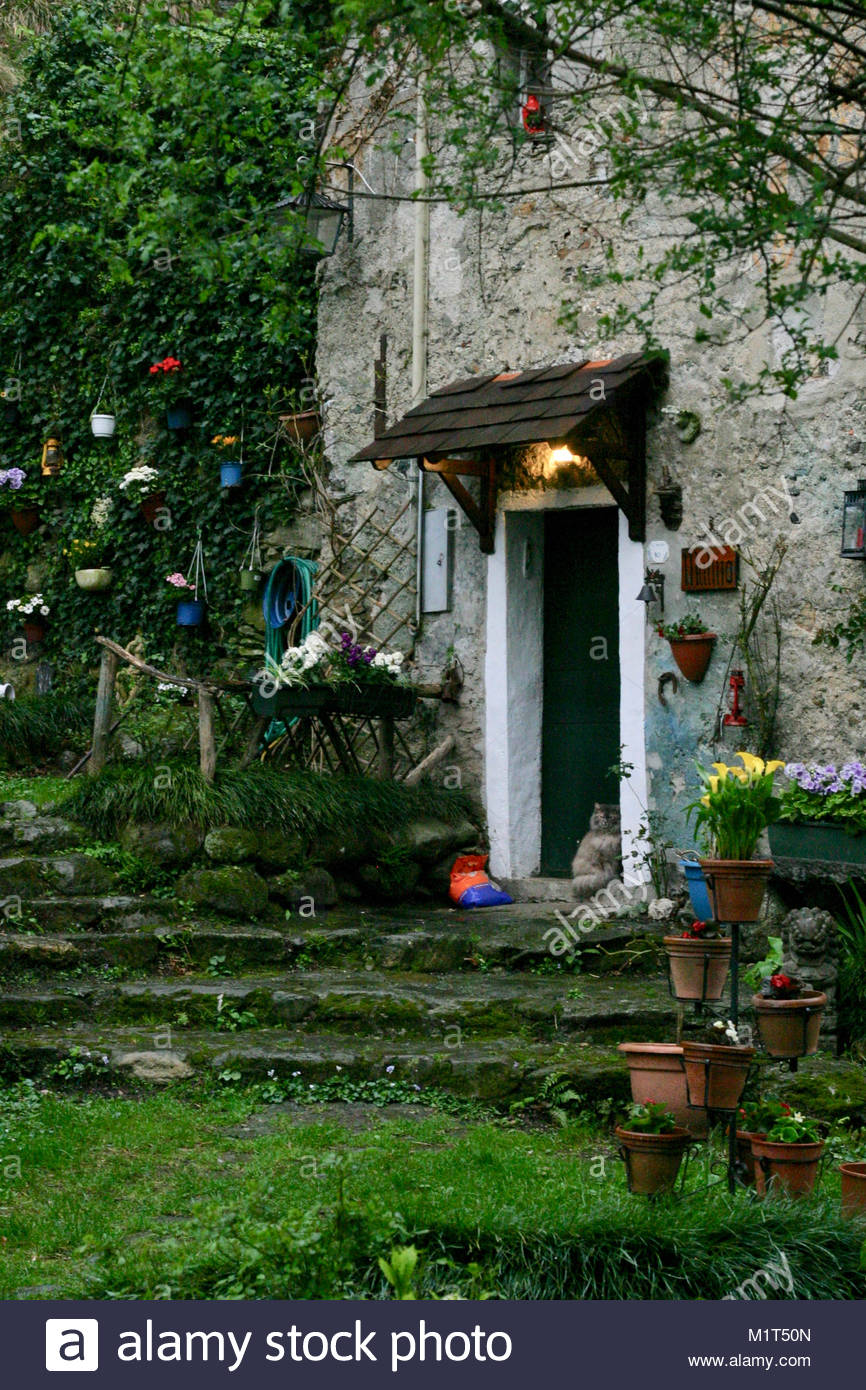 Charming Old Stone House With Garden Hidden In The Woods Northern Italy Cat Sitting Front Of Door