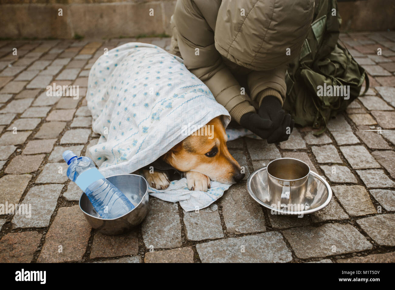 Social theme. A beggar beggar begging with a dog wrapped in a blanket to ask for help in the city of Prague is winter - Stock Image