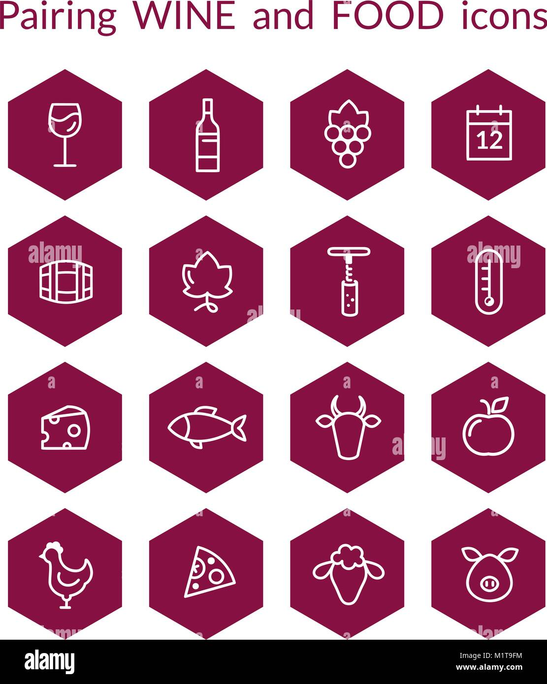 Set of vector icons for wine and food pairing matching, Includes fish, beef, pork, fruits, bottle, glass, grapes. - Stock Image