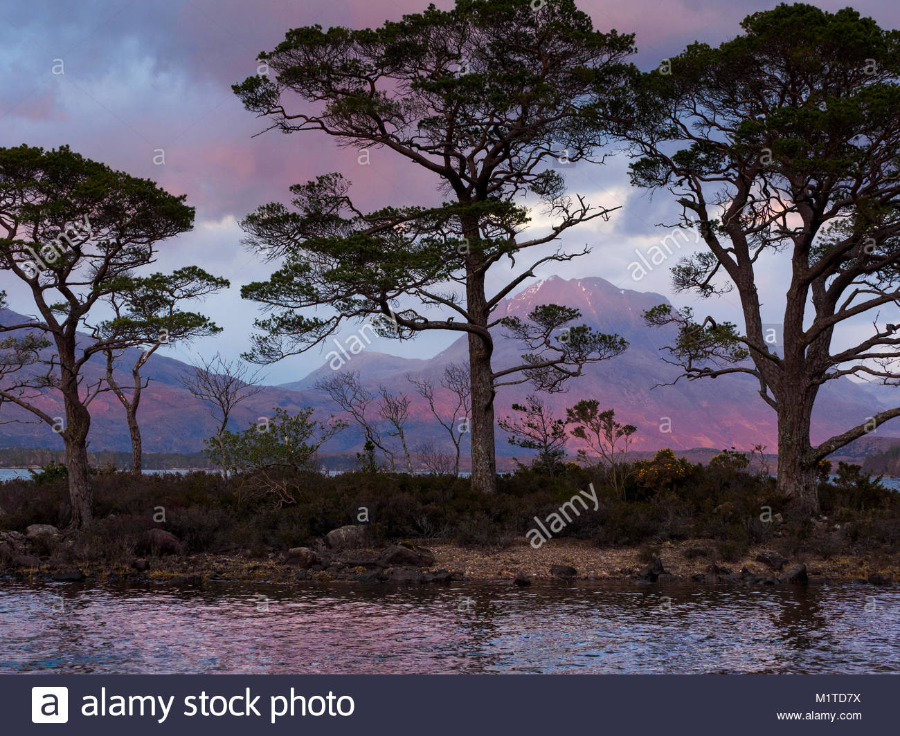 Loch Maree, Wester Ross, Scotland, United Kingdom. - Stock Image