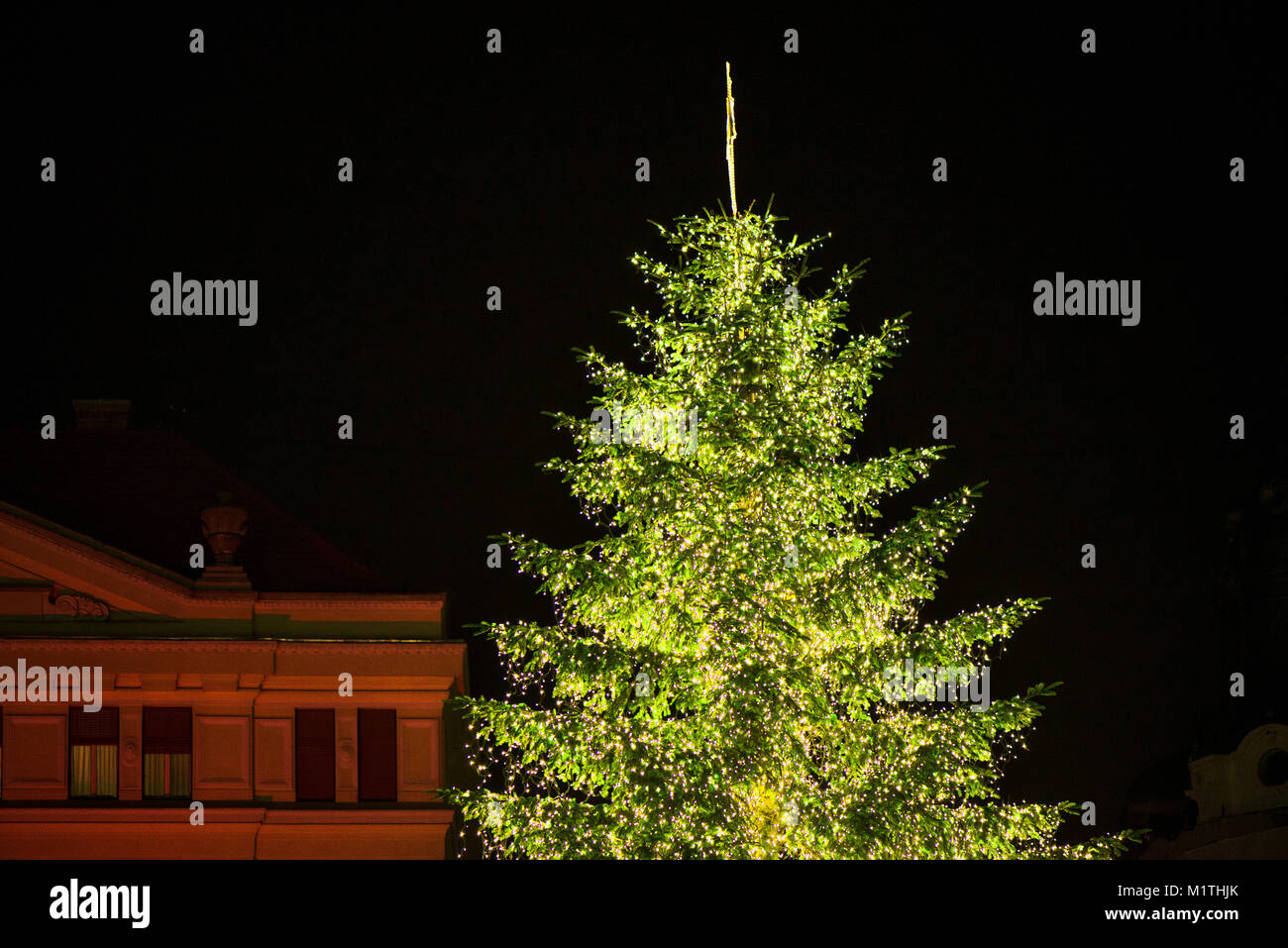 Too Big Christmas Tree House Stock Photos & Too Big Christmas Tree ...