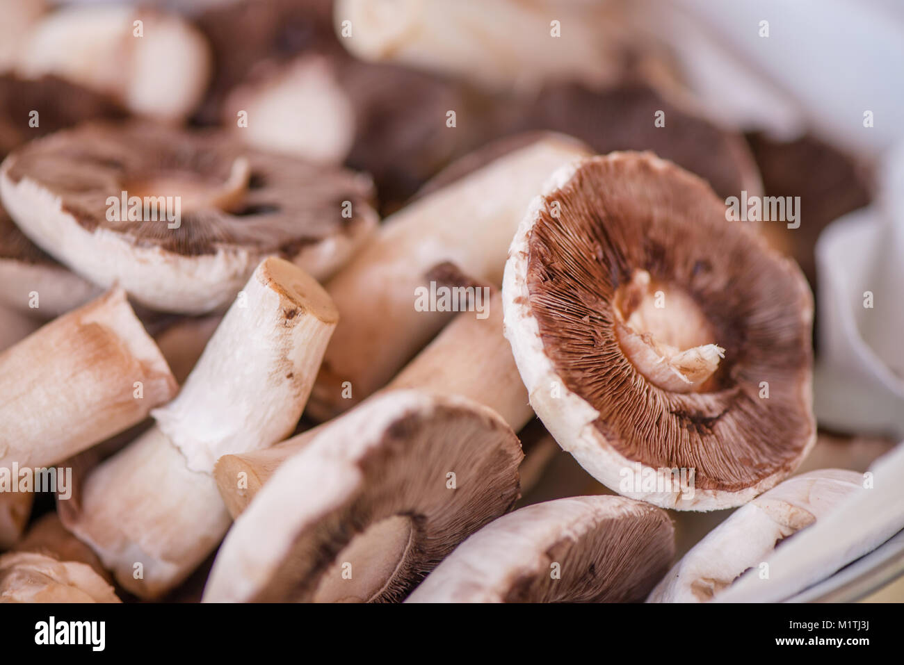 Preparing mushrooms for barbecue on holiday. Mushrooms with cheese spread in bowl. Cooking vegetables. Delicious Stock Photo