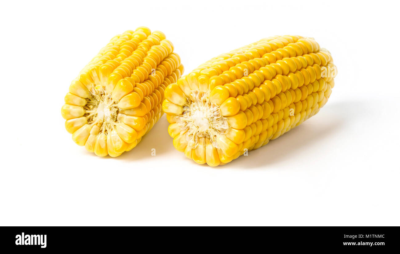 ears of Sweet corn isolated on white background - Stock Image