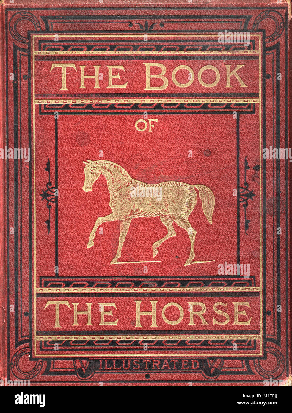 Victorian book cover The Book of the Horse - Stock Image