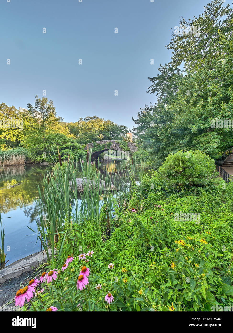 Gapstow Bridge is one of the icons of Central Park, Manhattan in New York City - Stock Image