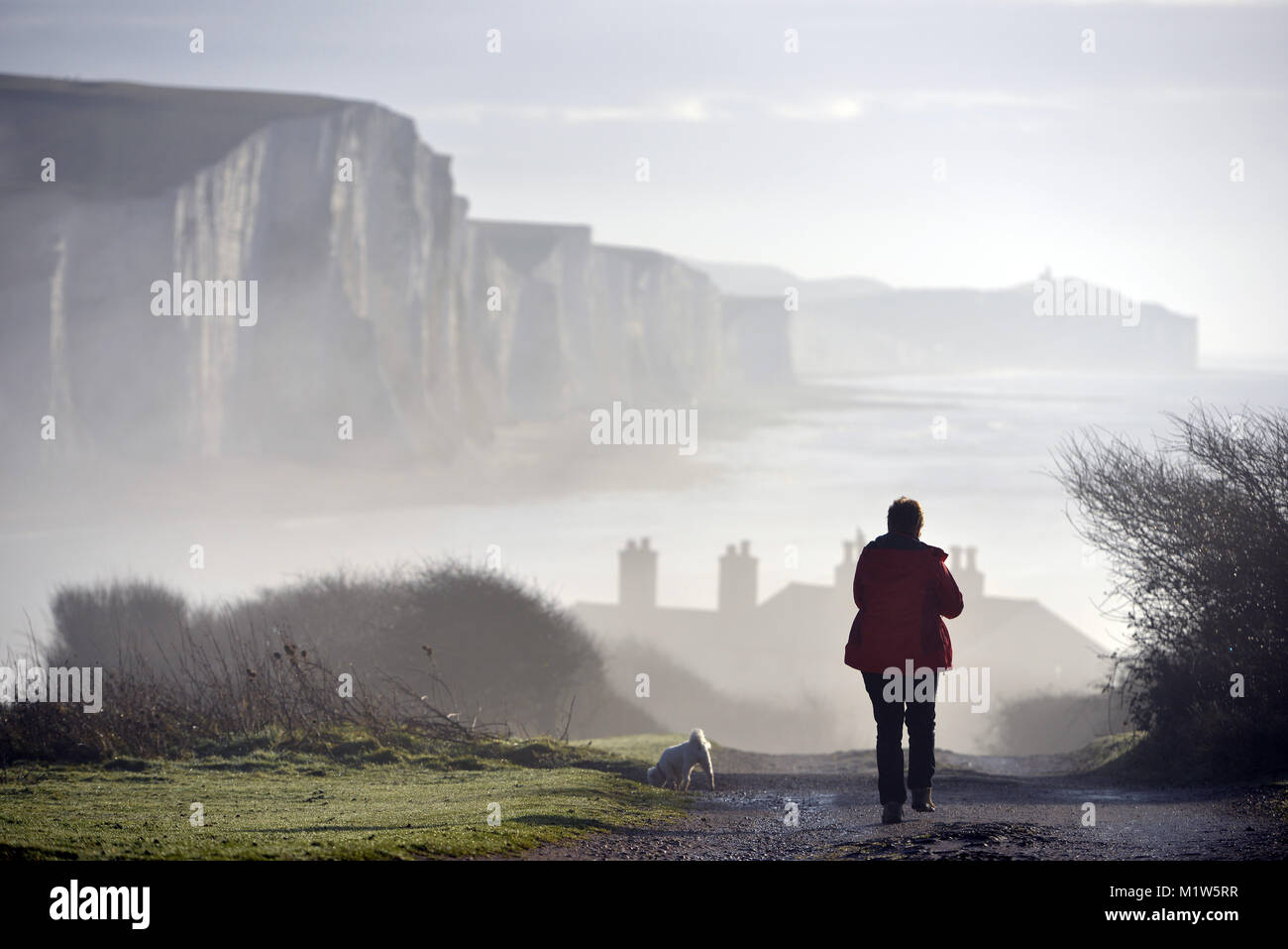 Lady walking dogs in the mist near the iconic Seven Sisters chalk cliffs, East Sussex, UK - Stock Image