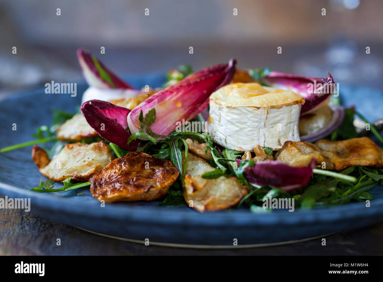 Jerusalem artichokes and grilled goat cheese salad with chicory and rocket - Stock Image