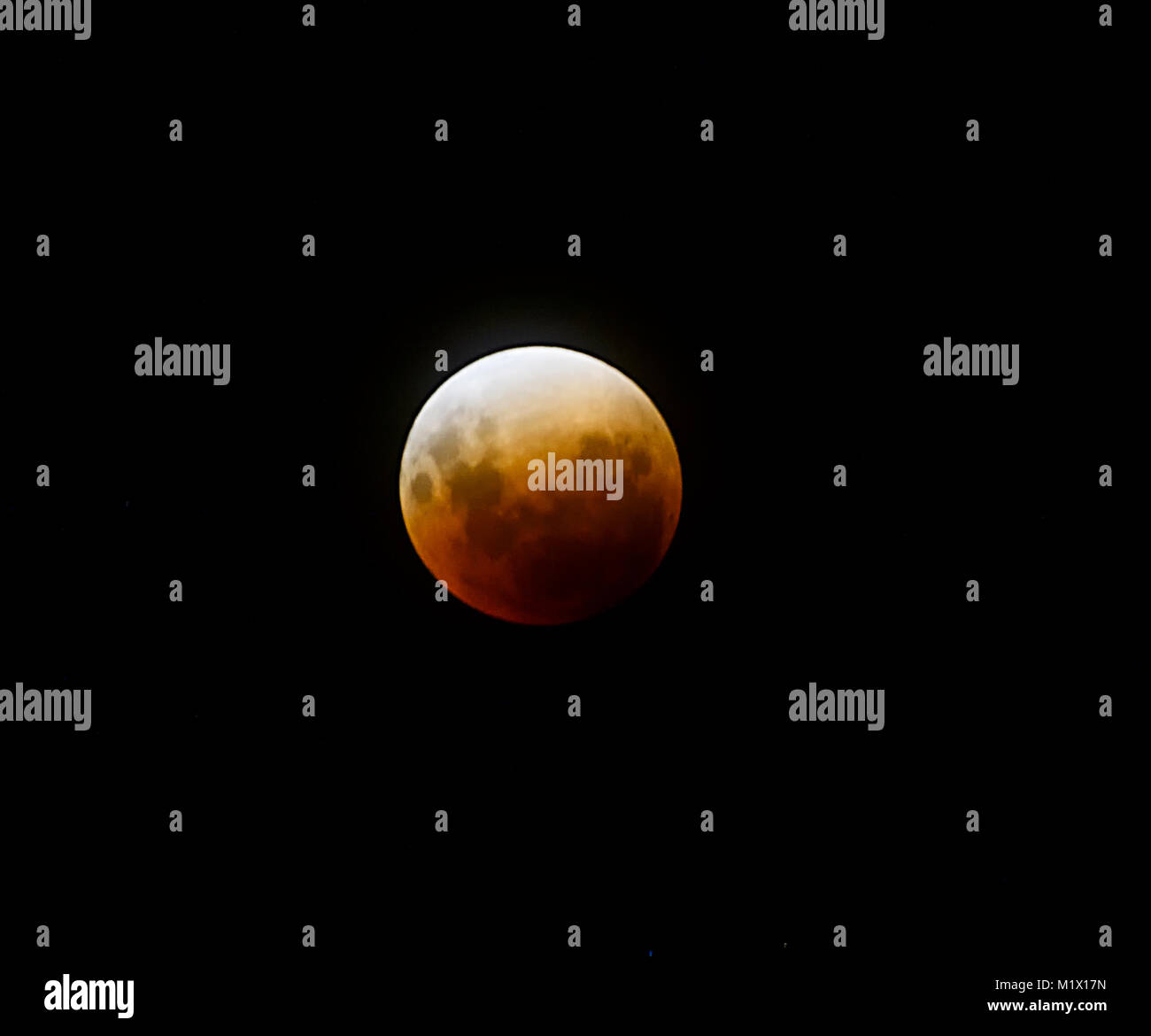 Super Blue Blood Moon eclipse which occurred on 31st January 2018 over Palm Cove, Cairns, Far North Queensland, - Stock Image