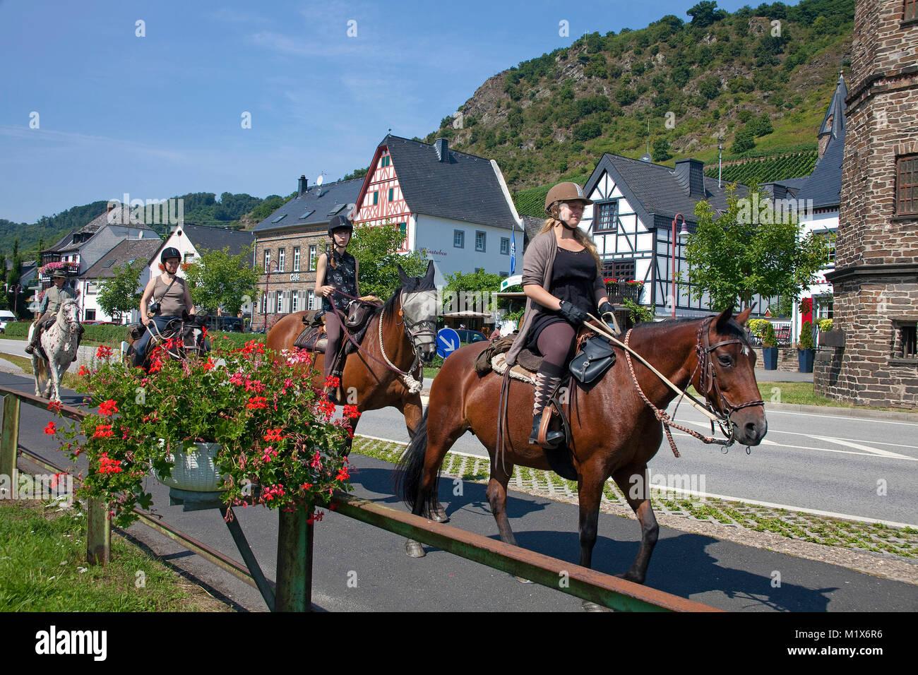 Horseback riding at riverside of Moselle river, Hatzenport, Moselle river, Rhineland-Palatinate, Germany, Europe Stock Photo