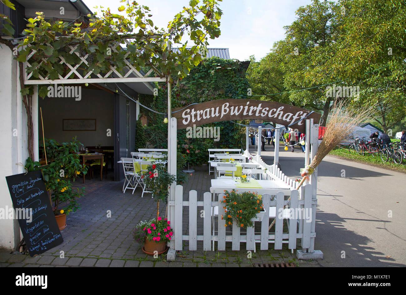 Strausswirtschaft, Besenwirtschaft, wine tavern selling homegrown wine at Brauneberg, Moselle river, Rhineland-Palatinate, - Stock Image