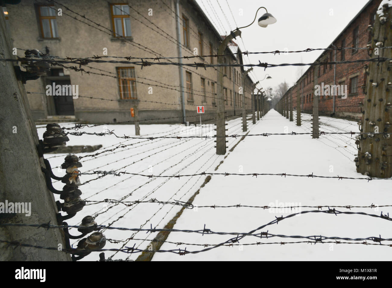Barbed wire fences and barriers inside Auschwitz I German Nazi Stock ...