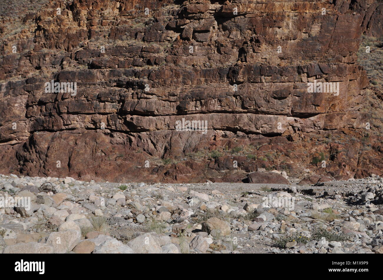 The Great Unconformity between Precambrian Vishnu Schist and Cambrian Tapeats Sandstone as exposed along the walls - Stock Image