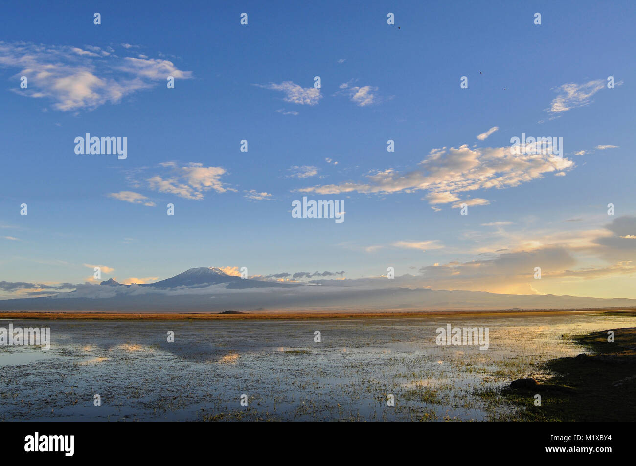 Wide angle view of lake in Amboseli National Park towards sunset with Kilimanjaro in the background. - Stock Image