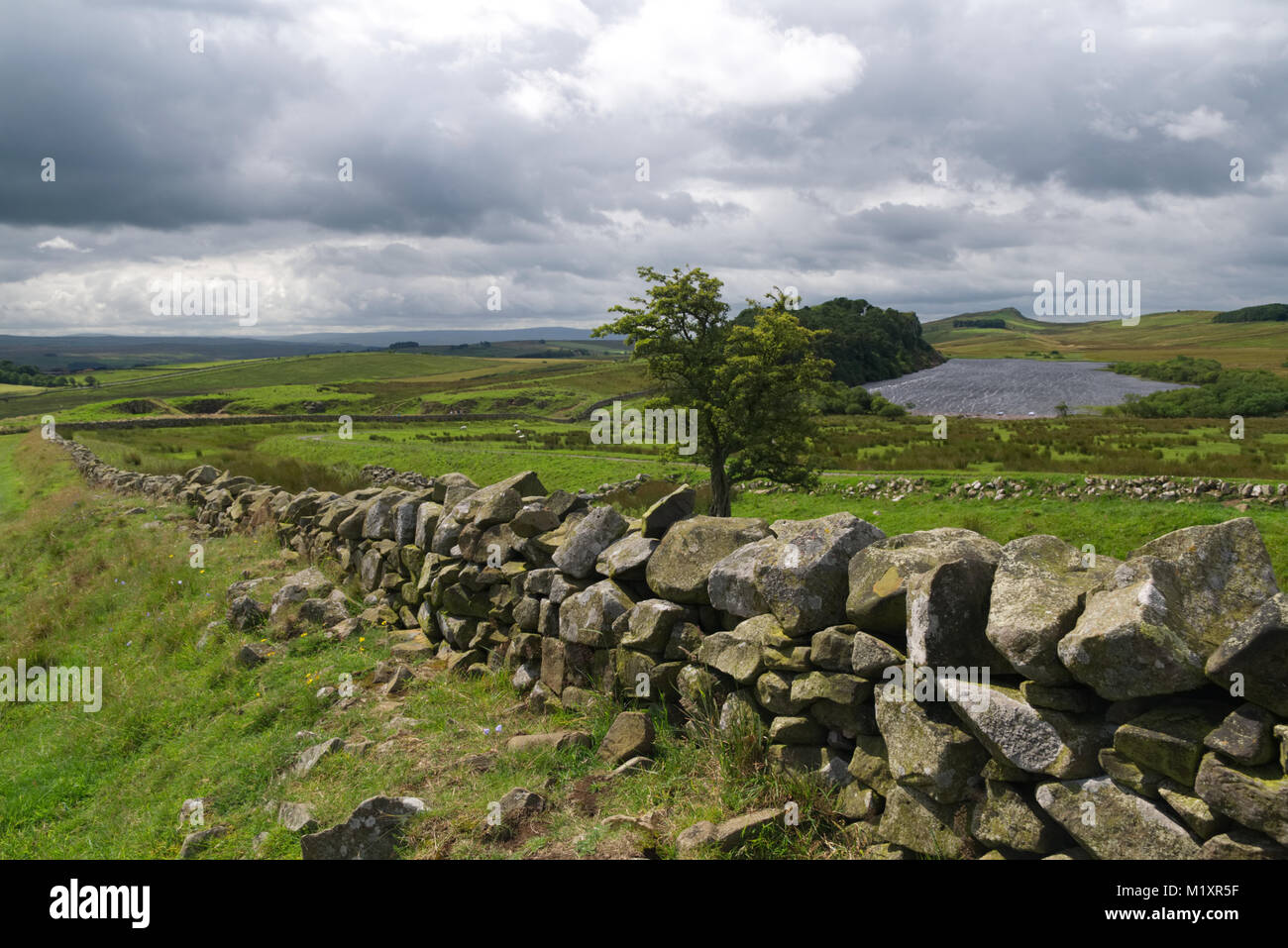 View over Hadrian's wall. Countryside landscape with trees, lake and dramatic sky with ancient stone wall as leading - Stock Image
