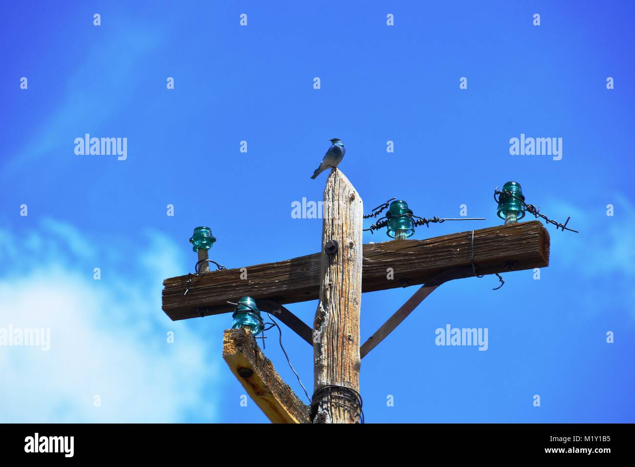 Masttop of telephone wire - Stock Image