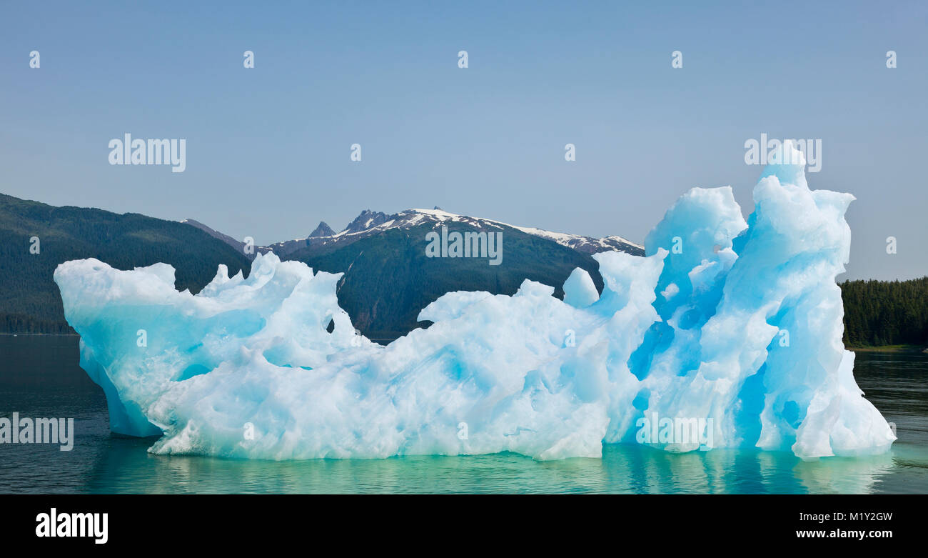 An iceberg and its reflection in Endicott Arm fjord contrasts with the sky, water, and forest of the Tongass National - Stock Image