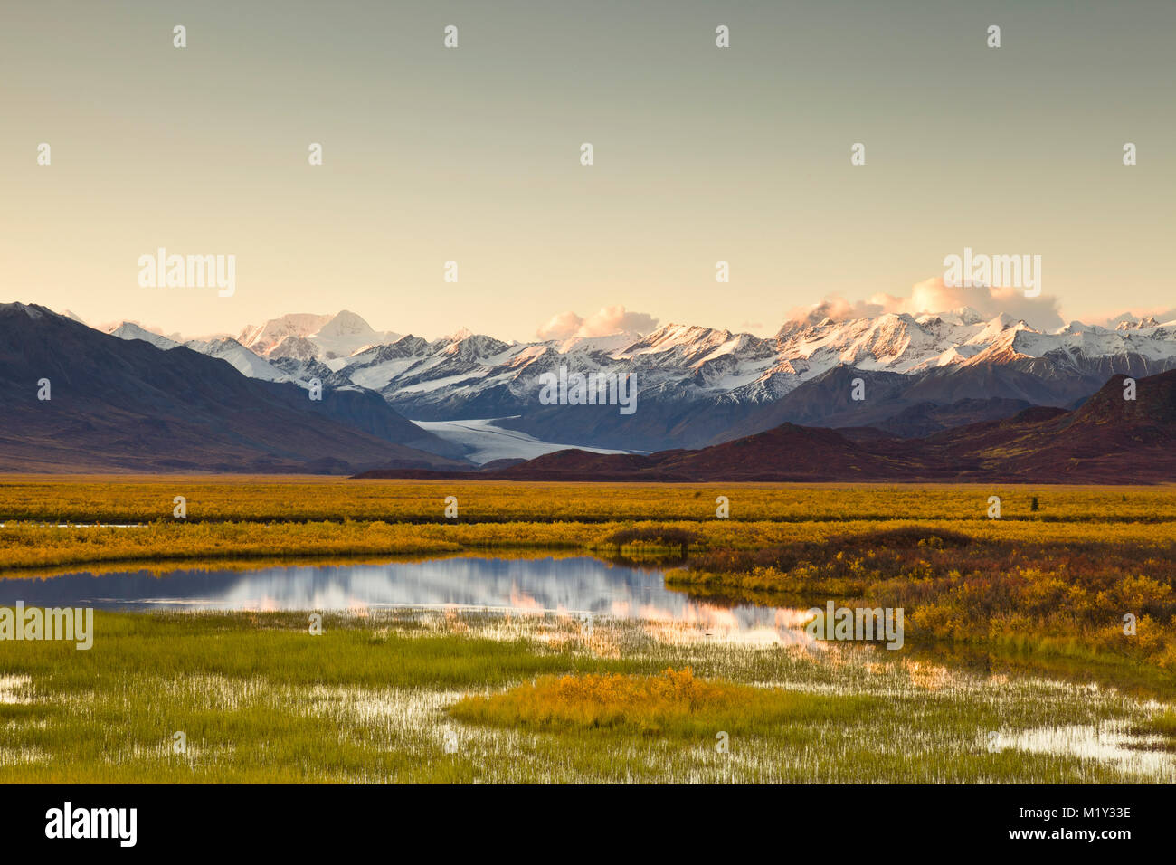 Reflection of eastern Alaska Range bathed in alpineglow at sunset on pond in the Maclaren River Valley with the Stock Photo