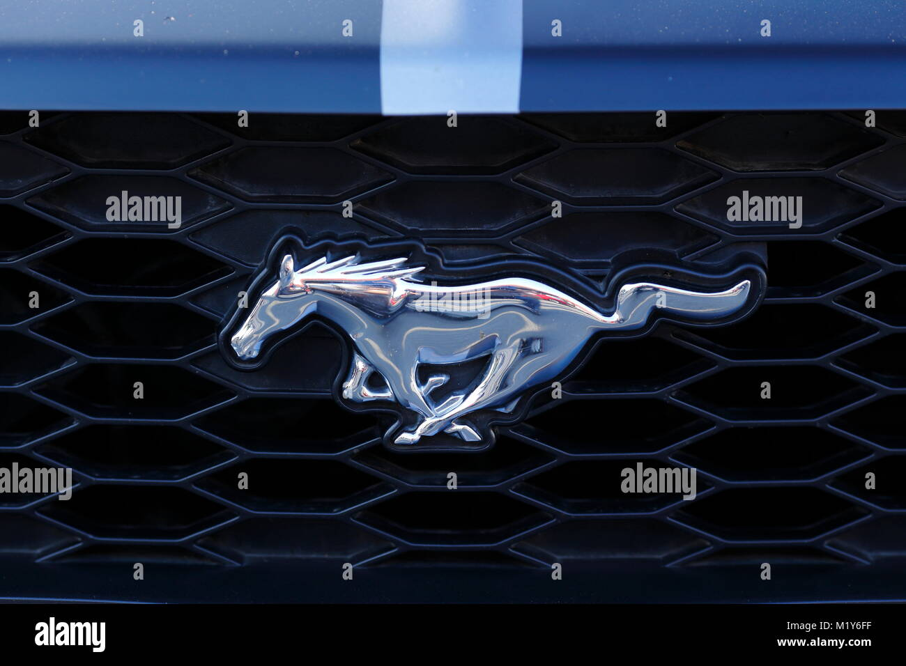 Mustang emblem stock photos mustang emblem stock images alamy ford mustang emblem on radiator of an oldtimer stock image biocorpaavc Gallery