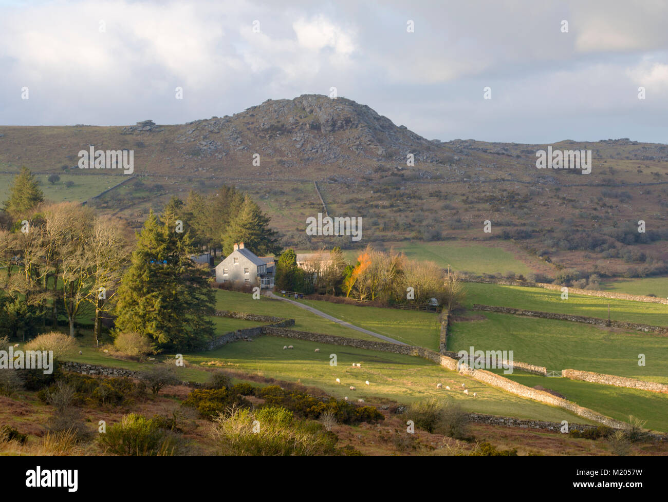 Cheesewring Farm on the slopes of Sharptor on Bodmin Moor Stock Photo