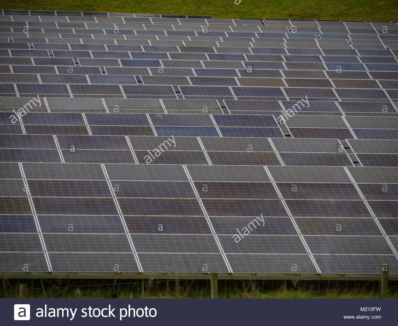 West Sussex Solar Panels in field - Stock Image
