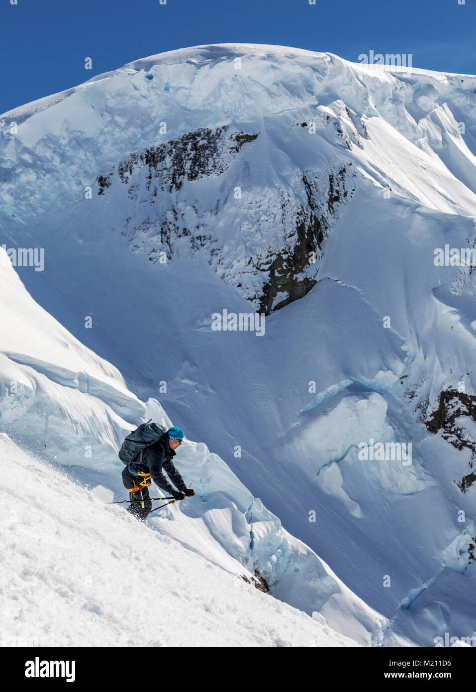 Alpine ski mountaineers skiing downhill in Antarctica Stock Photo
