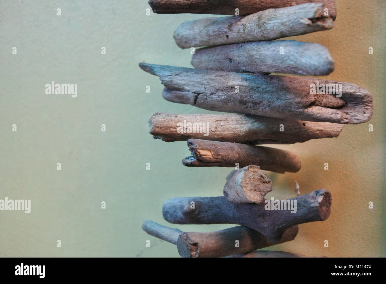 Small wood stems that is attached to each other. - Stock Image