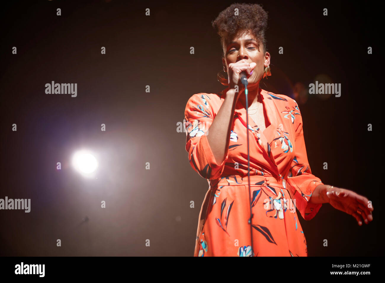 Sandra N' Kake performed in concert at The PLAN at Ris-orangis in Essonne on February 03, 2018 Credit: Véronique - Stock Image