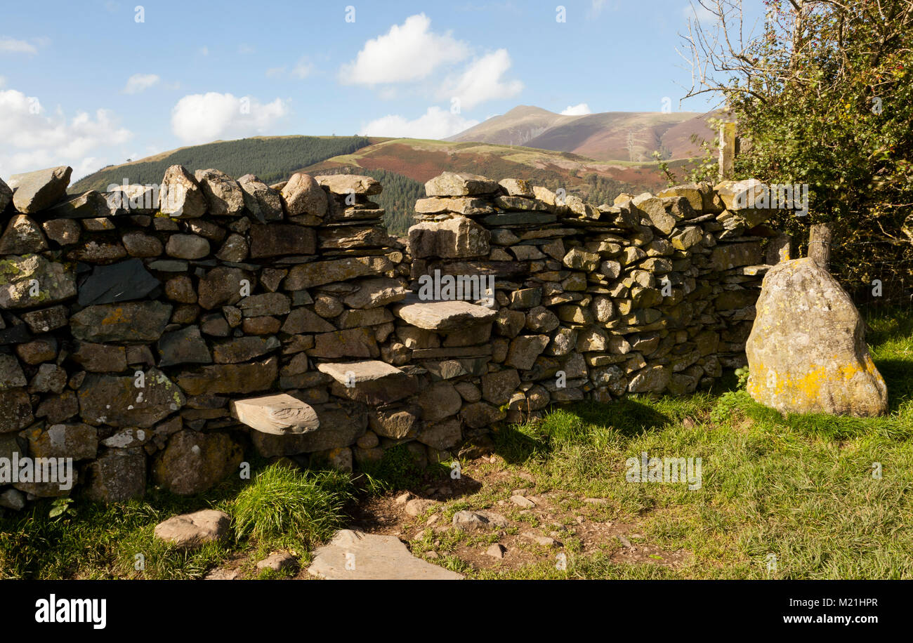 A drystone wall step stile, Lake District, UK - Stock Image