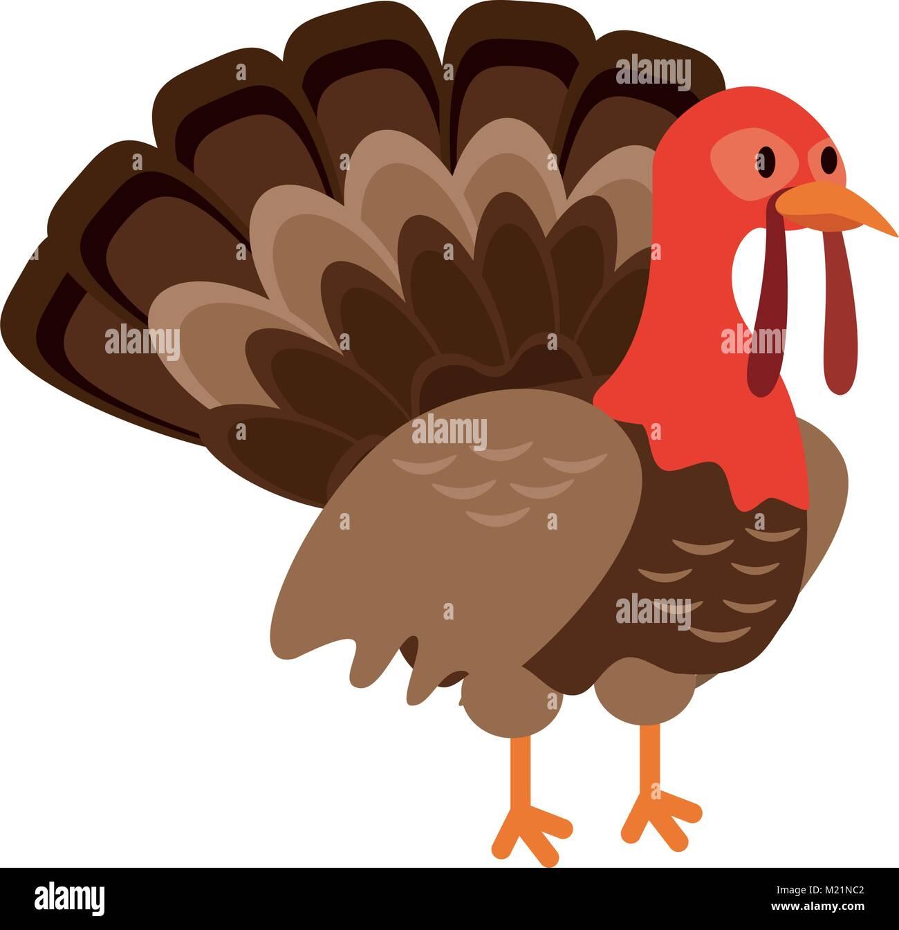 Turkey bird cartoon Stock Vector