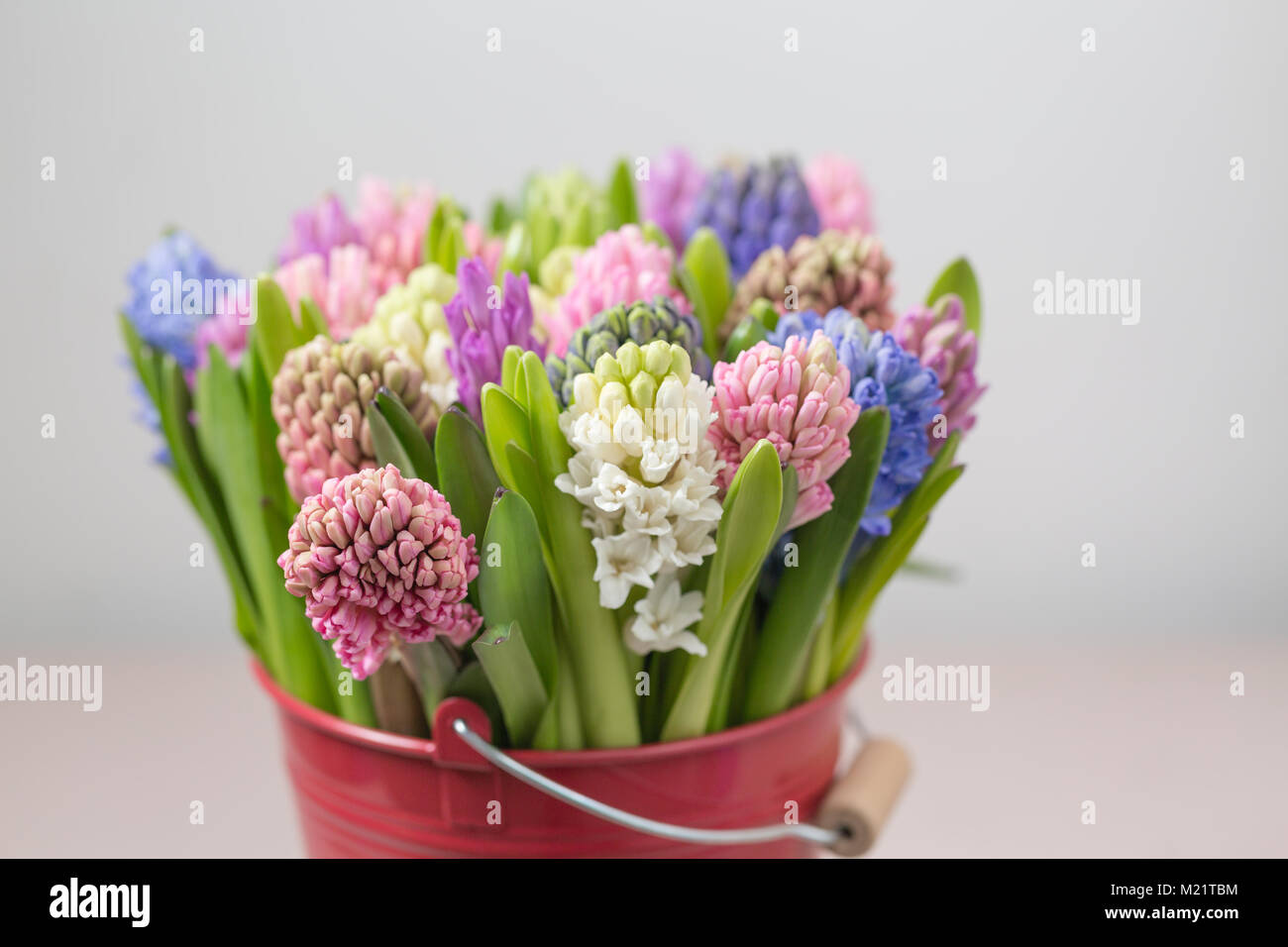 Flower shop concept. Mixed color. Fresh spring flowers in Stock ...