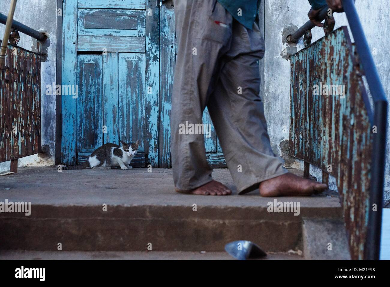 Black cat on door step behind human feet, Kompong Chhnang, Cambodia - Stock Image
