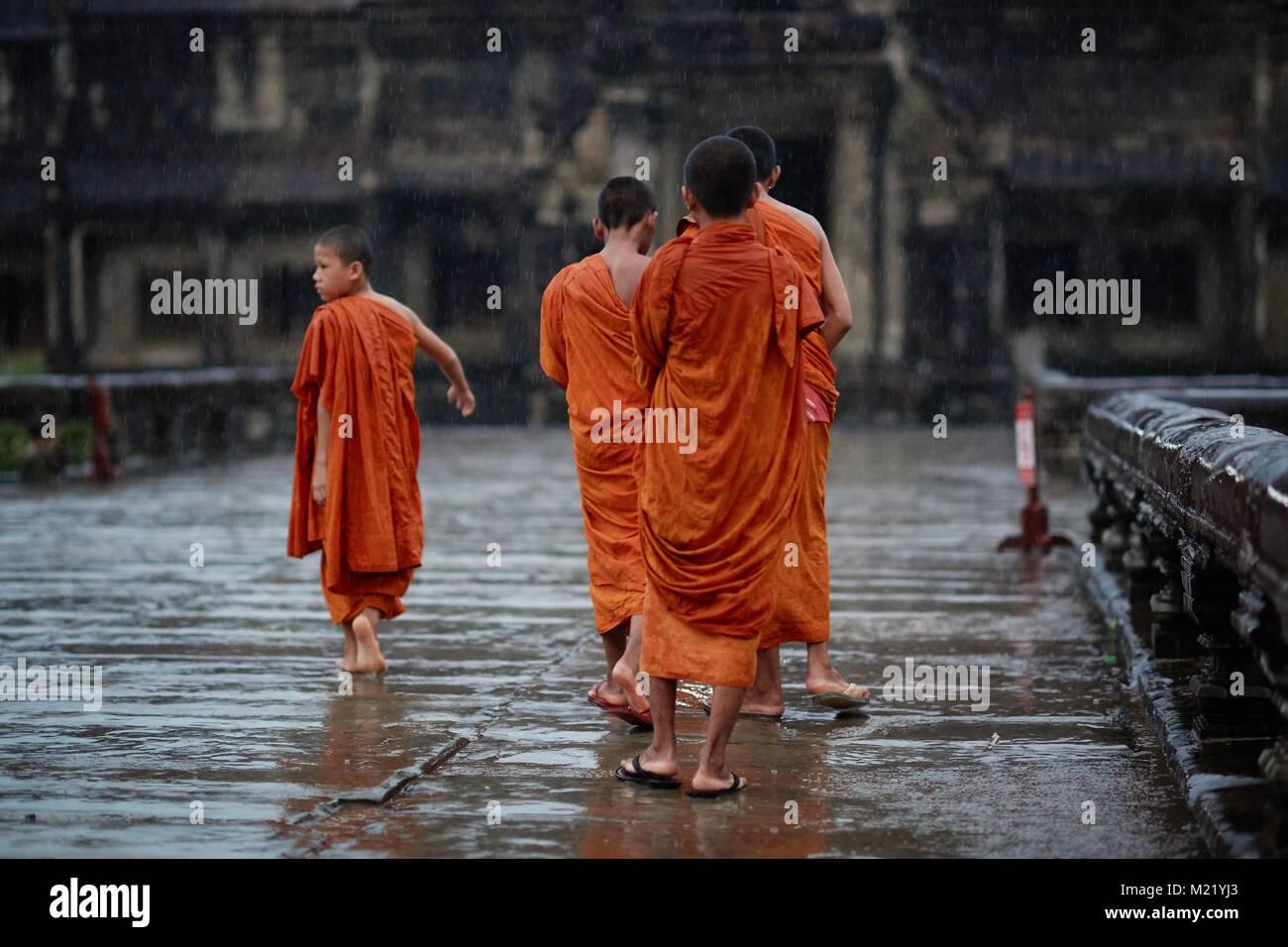 Young monks, Angkor Wat, Angkor, Cambodia - Stock Image