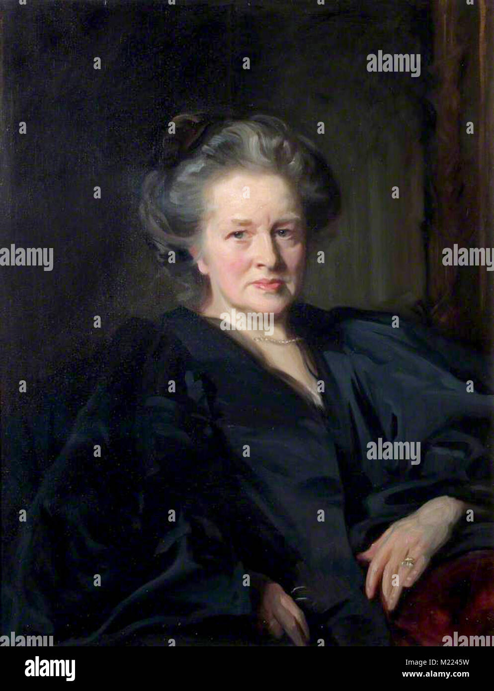 Elizabeth Garrett Anderson, (1836 – 1917), English physician, suffragist and feminist, the first Englishwoman to - Stock Image
