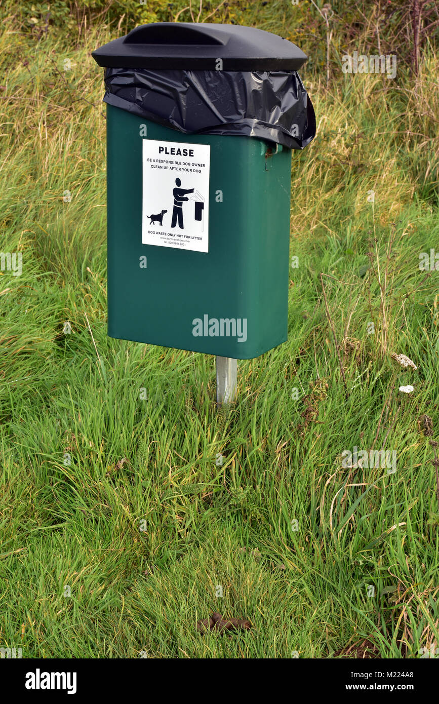 A green bin supplied by a local authority for dog droppings or poo bags. Dogs fouling streets and providing bins - Stock Image