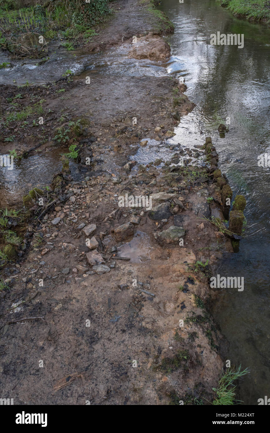 Broken flood defences of small river / large stream with seasonal winter flood water escaping through broken earthworks. - Stock Image