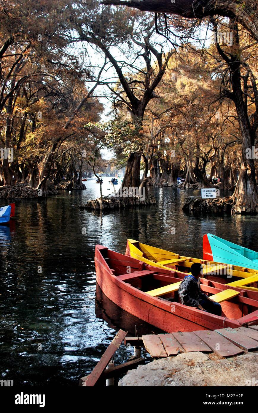 A boy sits in a boat in Lake Camecuaro (Lago de Camecuaro), Michoacan, Mexico. - Stock Image