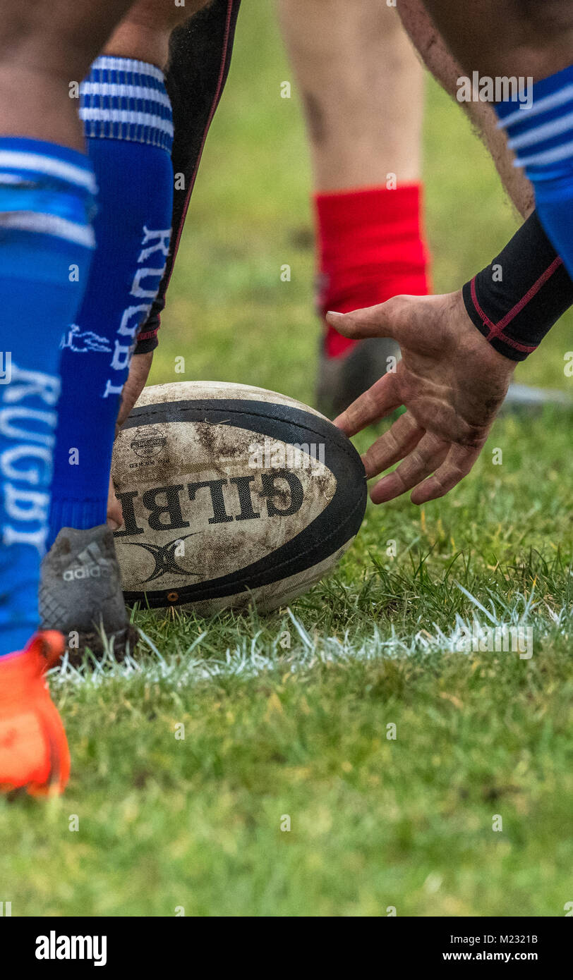 Rugby union football in a scrum. - Stock Image