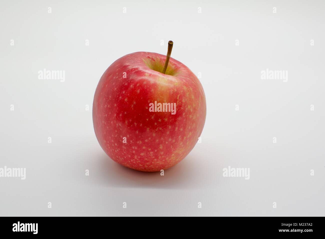 A single Jazz variety apple on a white background - Stock Image